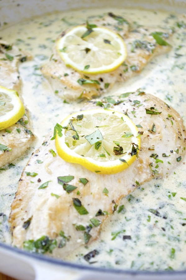 Chicken cutlets with lemon herb cream sauce fashionable foods chicken cutlets with lemon herb cream sauce forumfinder Choice Image